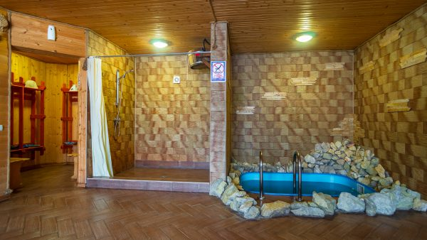 Sauna and Pool